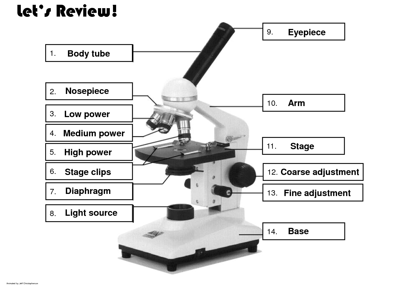 Worksheets The Compound Microscope Worksheet cells and microscope ms simpsons class site parts fill in image ans png